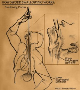 sword-swallowing-3a